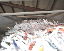 Do You Know Where Your Paper Goes After Secure Document Shredding? - Featured Image