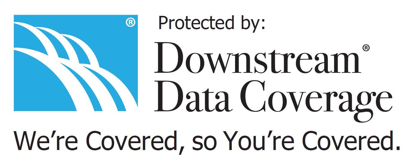 Downstream Data Logo WCSYC